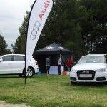 Carpa Audi